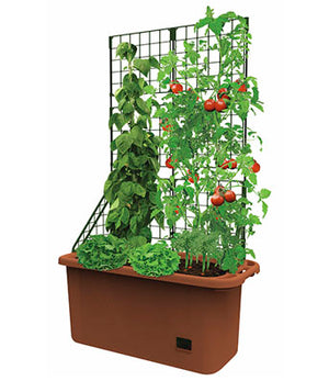 Mobile Vegetable Patch with Trellis Grow Herbs Patio Gardens Small Backyards
