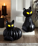 Lighted Pumpkin Cats