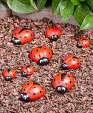 Ladybug or Bee Garden Decor