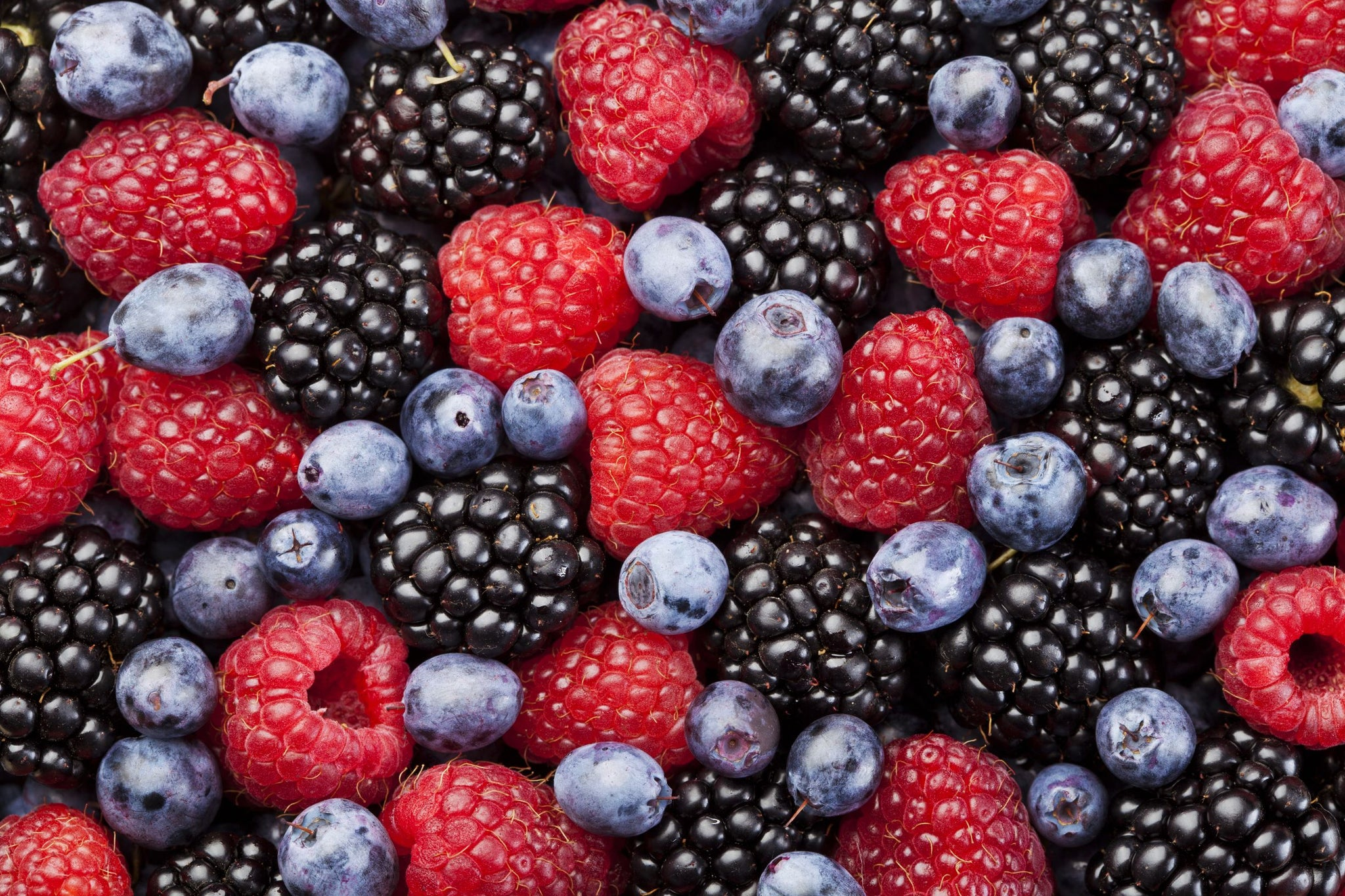 Sysco Classic Individually Quick Frozen Mixed Berry Blend - Blueberries/Blackberries/Strawberries/Raspberries 2.5 kg - 2 Pack [$6.90/kg]