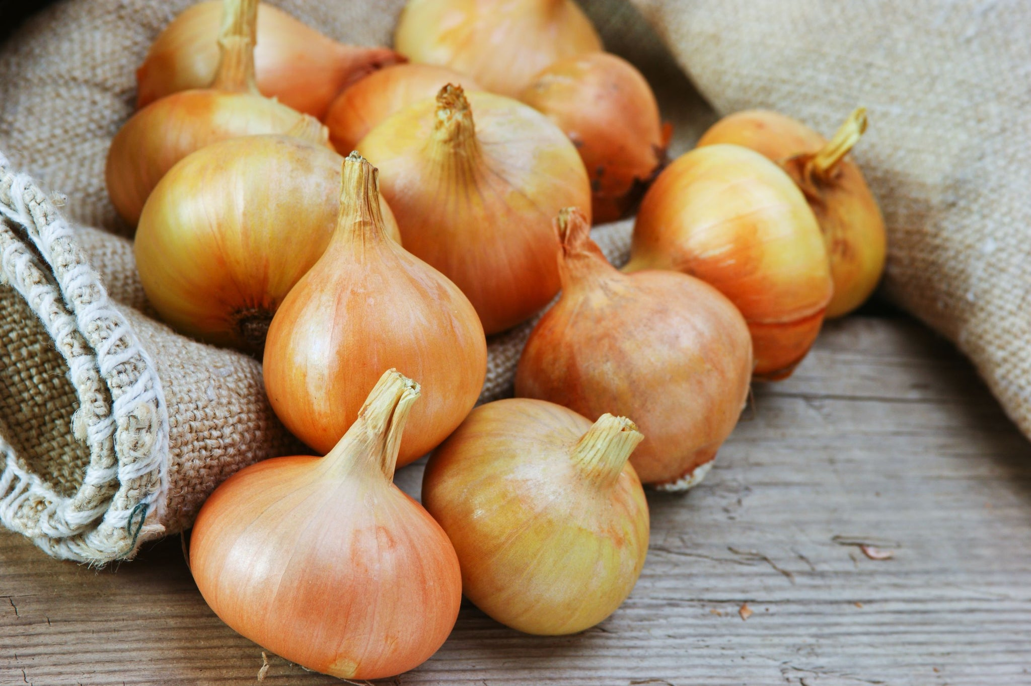 Packer Fresh Yellow Jumbo Onion - 5 Pack [$0.60/lb]