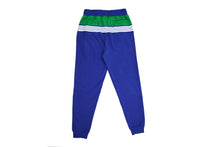 Load image into Gallery viewer, RETRO TRACK PANT ROYAL / GREEN JA-4100