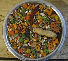 BBA Pretty parrot mix Bulk