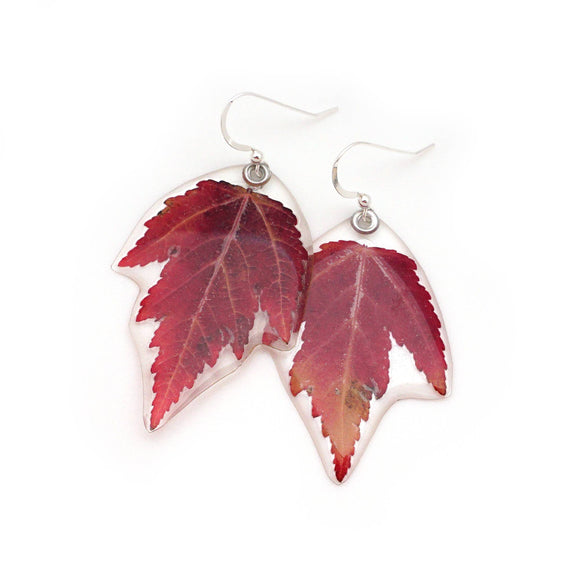67052 Mini Maple Leaf Earrings
