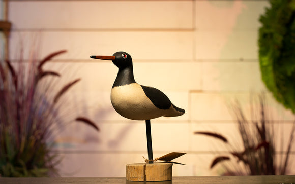 Oystercatcher Hand Carved Decoy