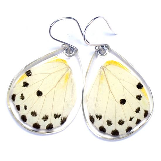 Belenois Calypso Paper White Butterfly Earrings