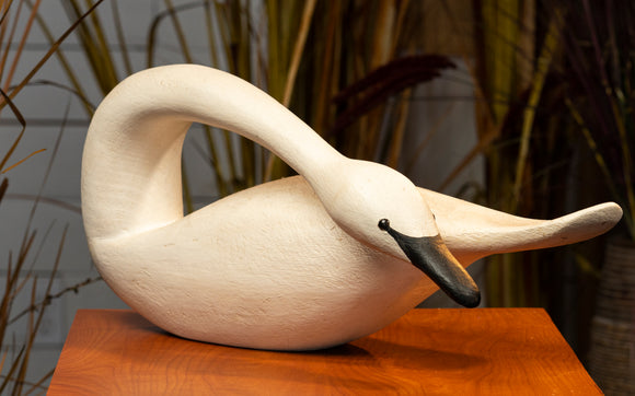 Swan Hand Carved Decoy