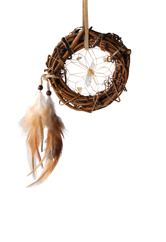 VS22 - Vision Seeker Dream Catcher Twig