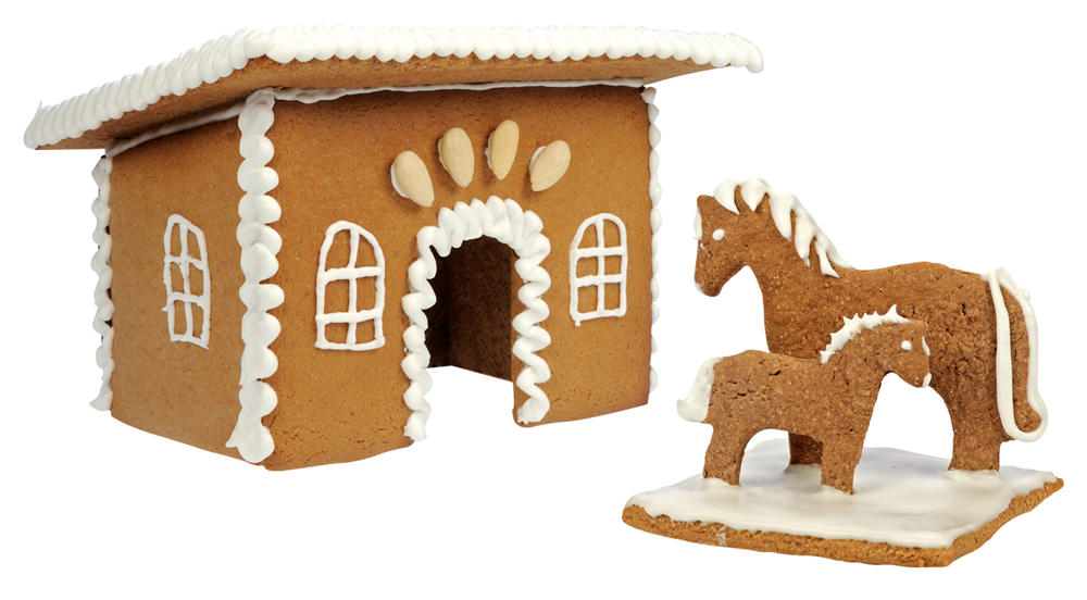 Gingerbread Baking Set
