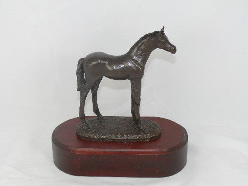 Mary Pinsent - Pony Foal Standing Statue