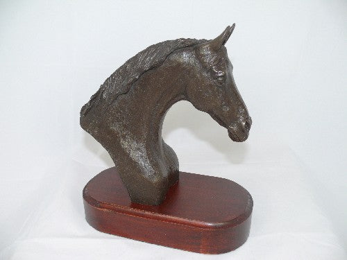 Mary Pinsent - Thoroughbred Head Large