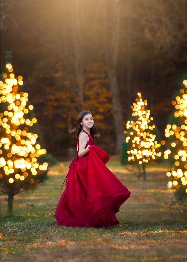 Crimson Dreams Gown- Gorgeous special occasion or photo shoot dress