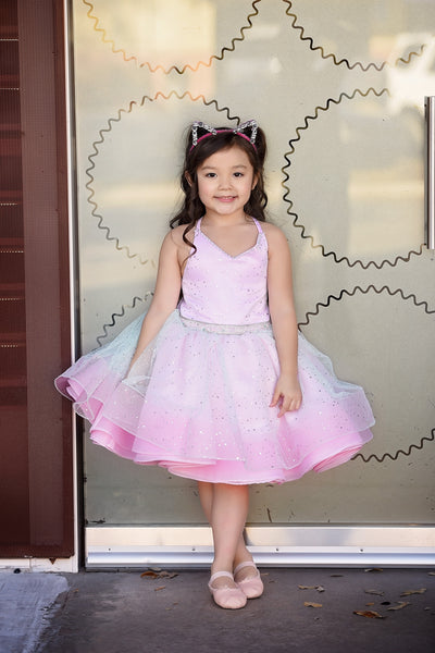 """Dreamer"" Flower Girl Dress,  Special Occasion Dress"