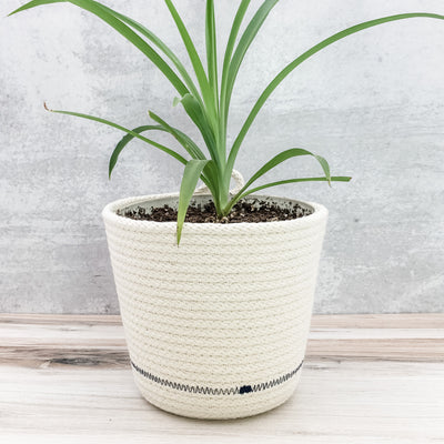 Tall Planter (indigo)