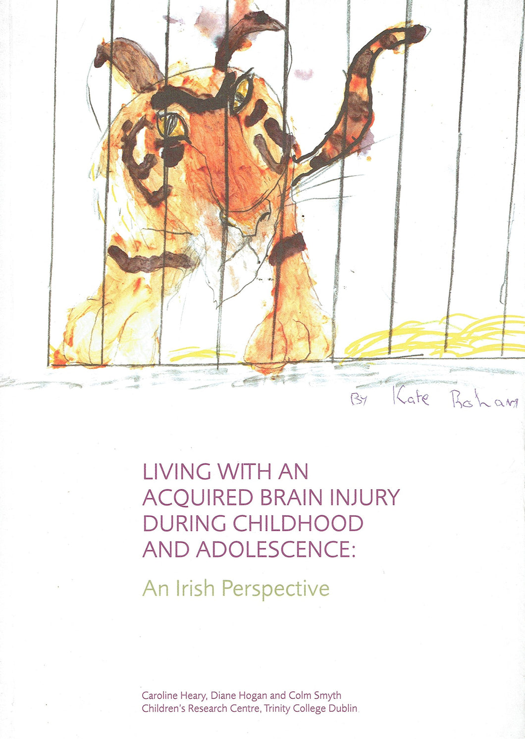 Living with an Acquired Brain Injury During Childhood and Adolescence: An Irish Perspective