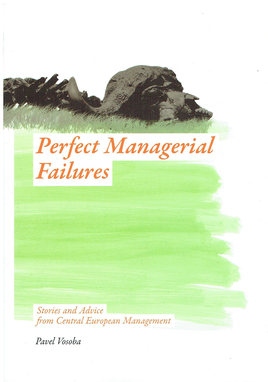 Perfect Managerial Failures: Stories and Advice from Central European Management