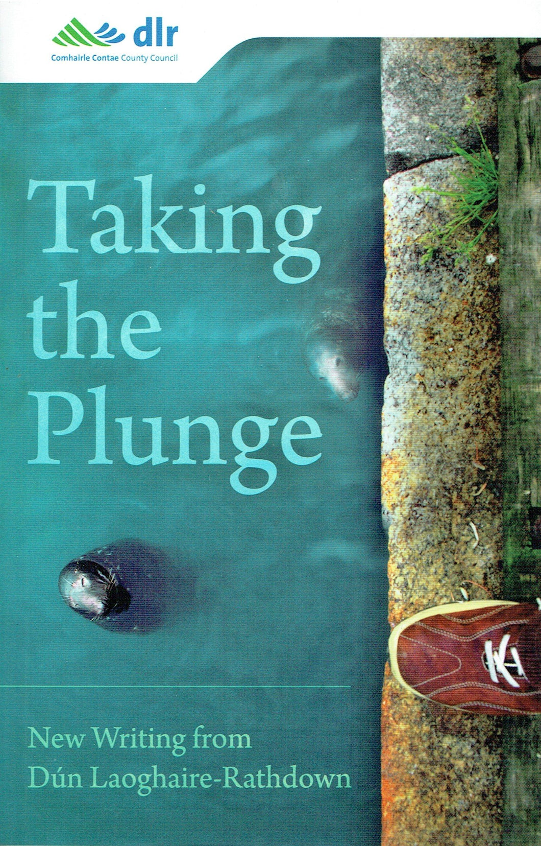 Taking the Plunge: New Writing from Dún Laoghaire-Rathdown