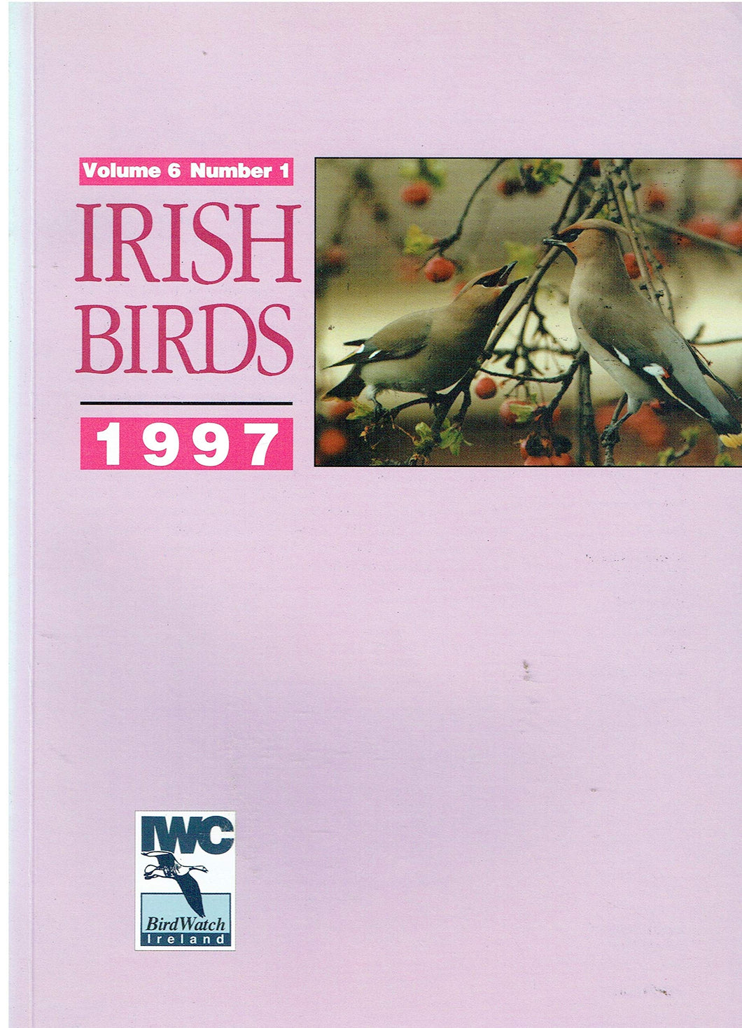 Irish Birds, 1997 - Volume 6 Number 1