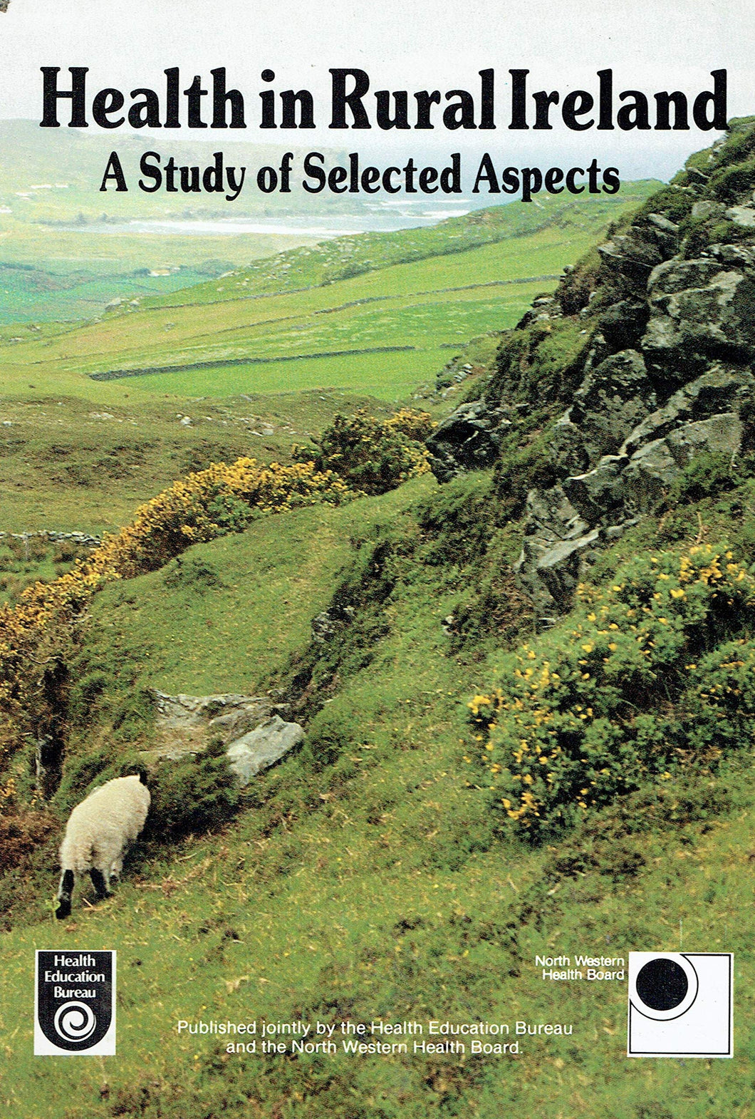 Health in rural Ireland: A study of selected aspects