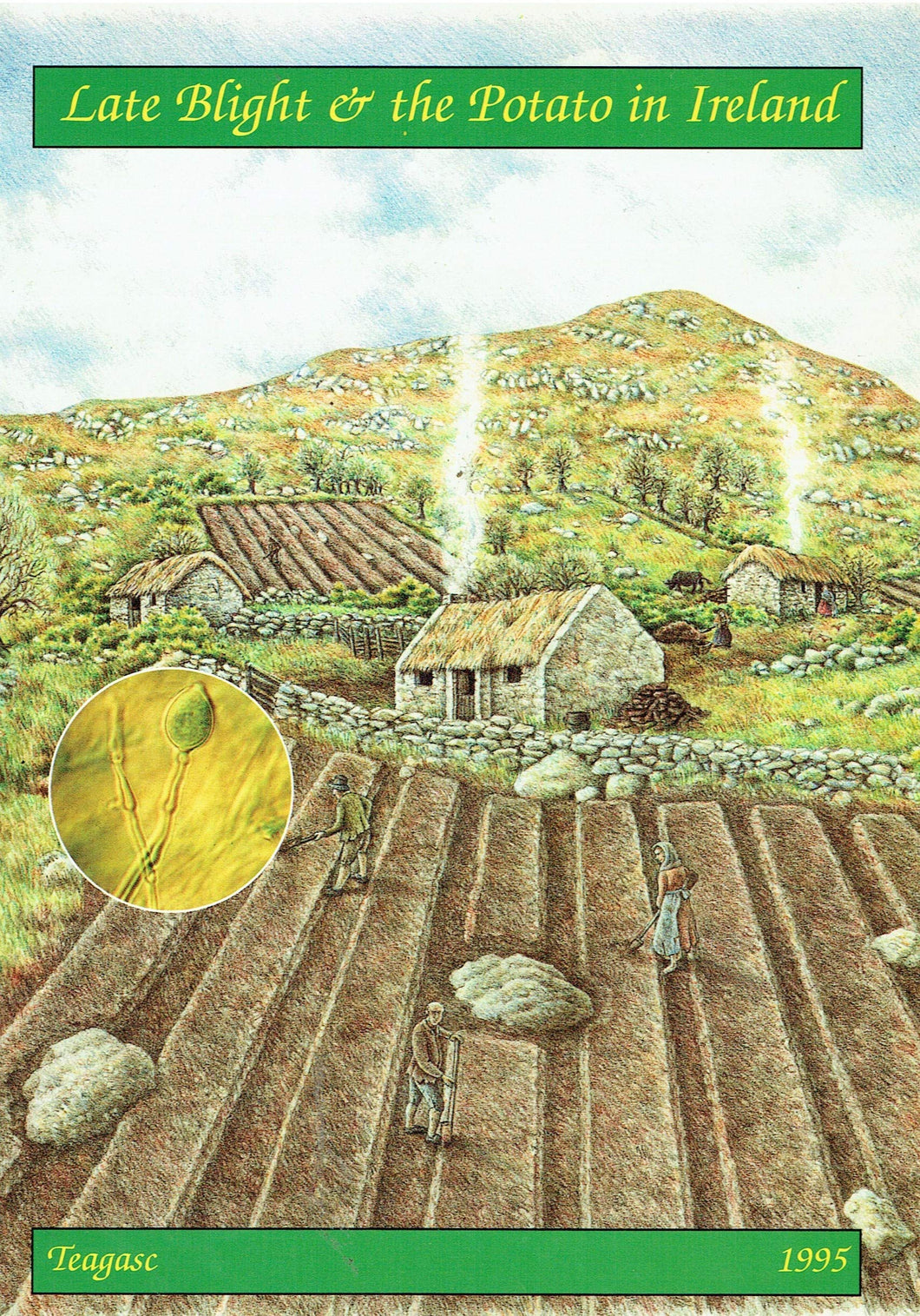 Late Blight and the Potato in Ireland: A Short History of the Potato, the Famine, Late Blight and Irish Research on Phytophthora Infestans