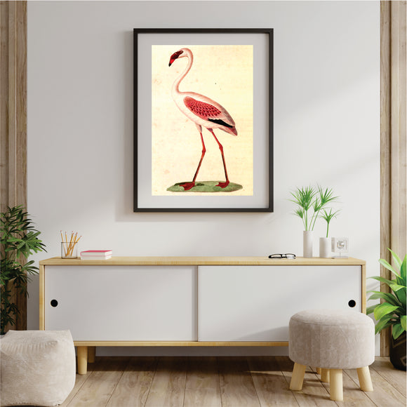 Gracious Flamingo Art Print