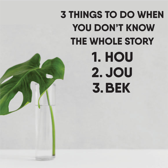 3 Things To Do When You Don't Know The Whole Story Vinyl Wall Art