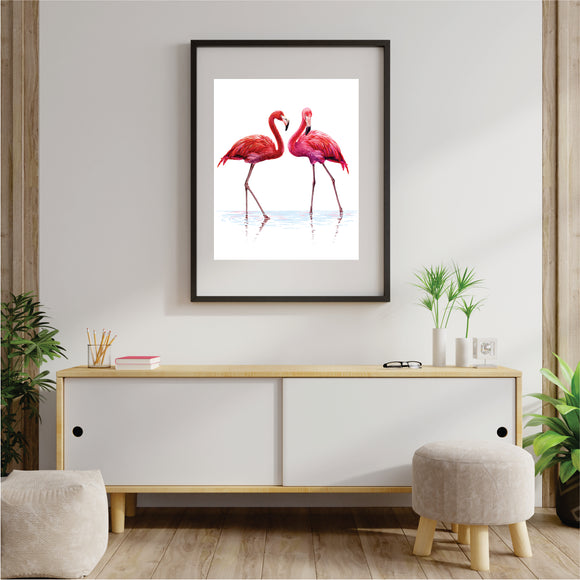 Pair Of  Flamingos Art Print