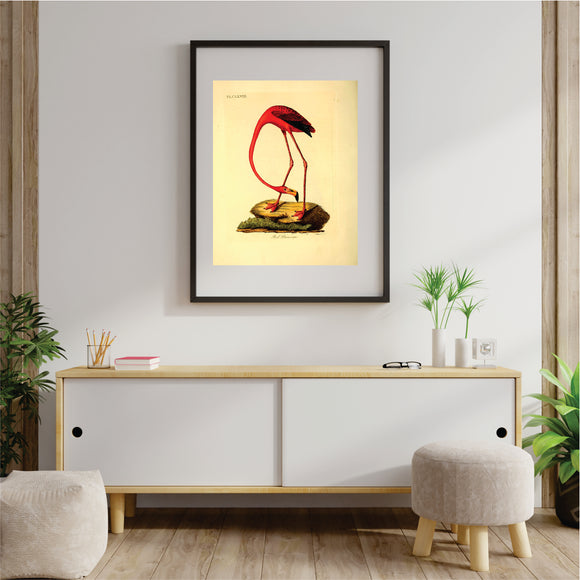 Red Flamingo Art Print