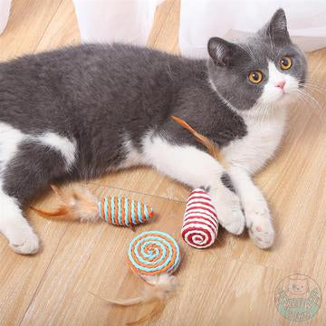 tuxedo cat with sisal natural toys indoors