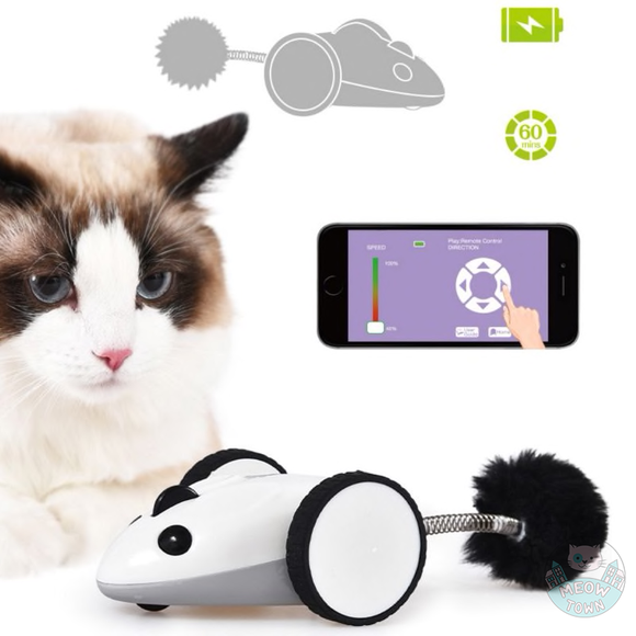 app control mouse cat toy