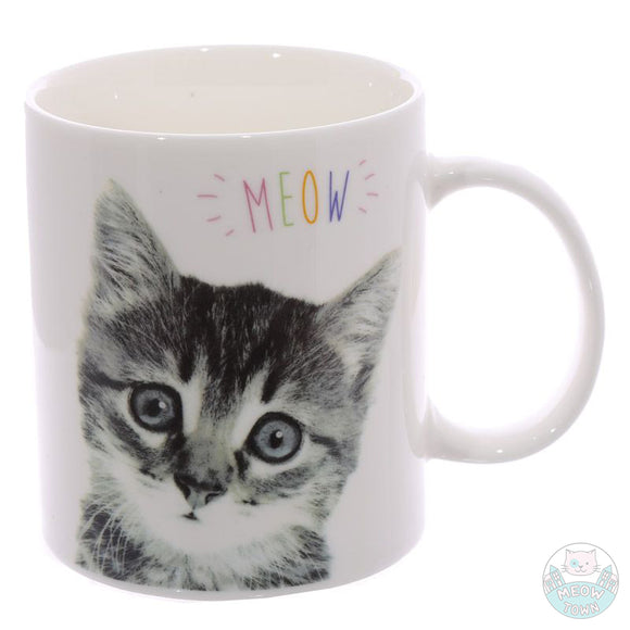 Meow slogan porcelain mug for cat lovers cute kitten print