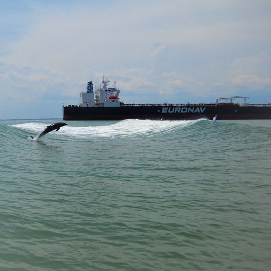 Tanker Surf Charters