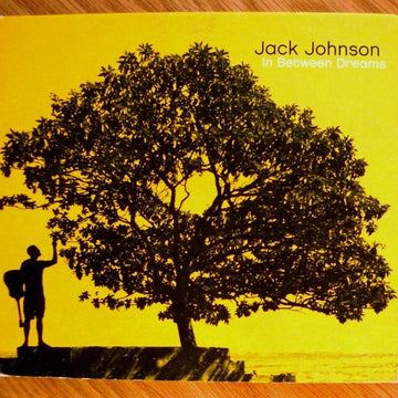 Jack Johnson—In Between Dreams