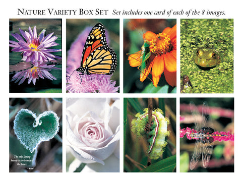 Nature Variety Greeting Cards