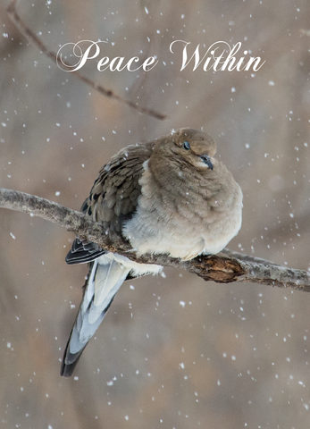 Peace on Earth Holiday Cards, 10 Cards