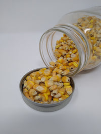 Yellow Corn, Whole (25 lb bag)