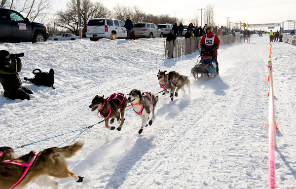 Canadian Challenge Sled Dog Race in Saskatchewan
