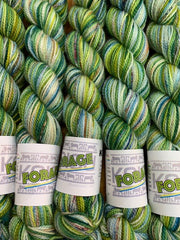 Koigu Collectors Club