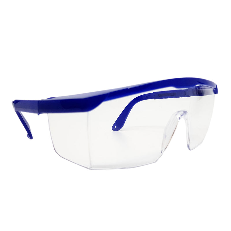 Safety Glasses (Blue & Clear)