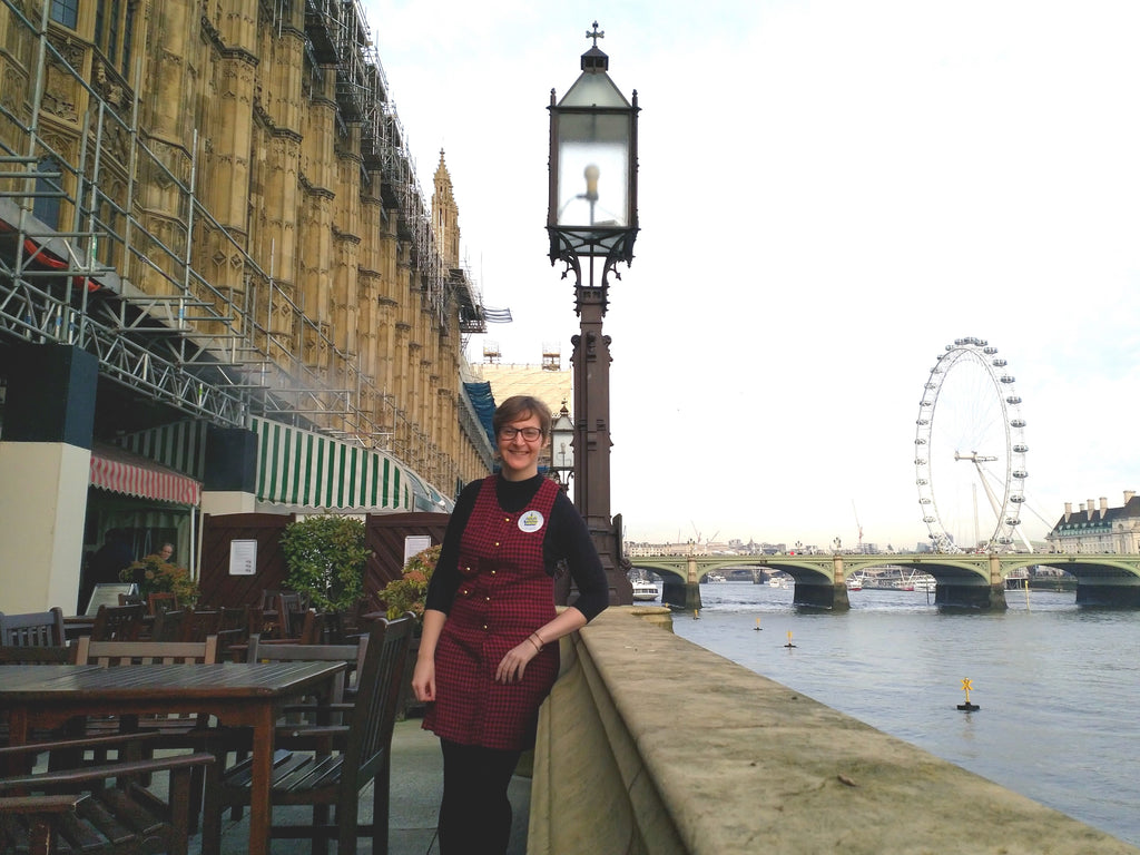 Nicola invited to the House of Lords to celebrate small business success
