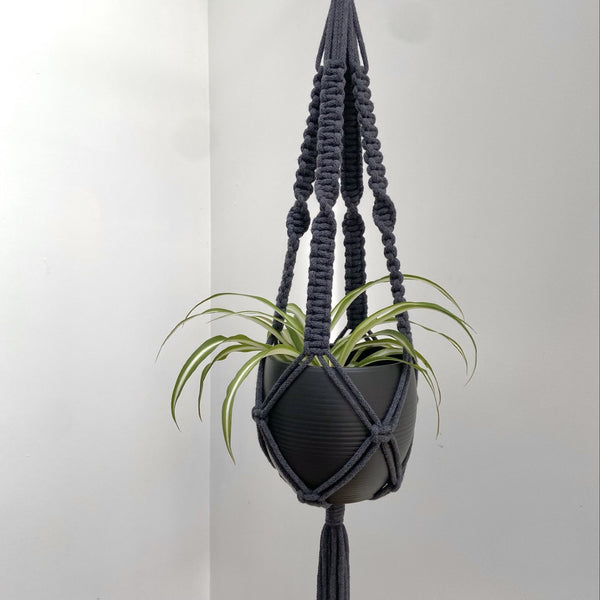 Square Knot Macramé Plant Hanger available in a range of colours
