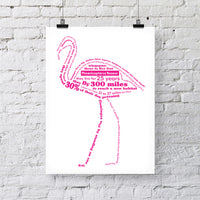 Flamingo Facts Print