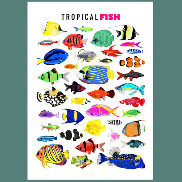 Tropical Fish Illustrated Print