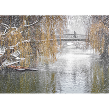 Load image into Gallery viewer, Winter Scenes Christmas Cards