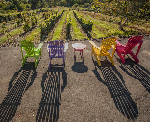 Chairs looking out at vines with the sun setting.