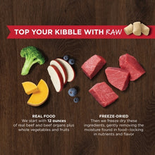 Load image into Gallery viewer, NATURES VARIETY FREEZE DRIED RAW BOOST MIXER BEEF DOG 170G