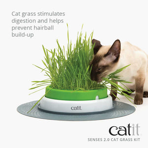 HAGEN CATIT SENSES 2.0 GRASS KIT CAT 3PK