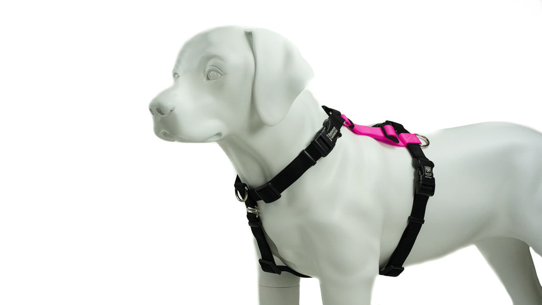 BLUE9 BALANCE HARNESS BUCKLE NECK PINK LARGE