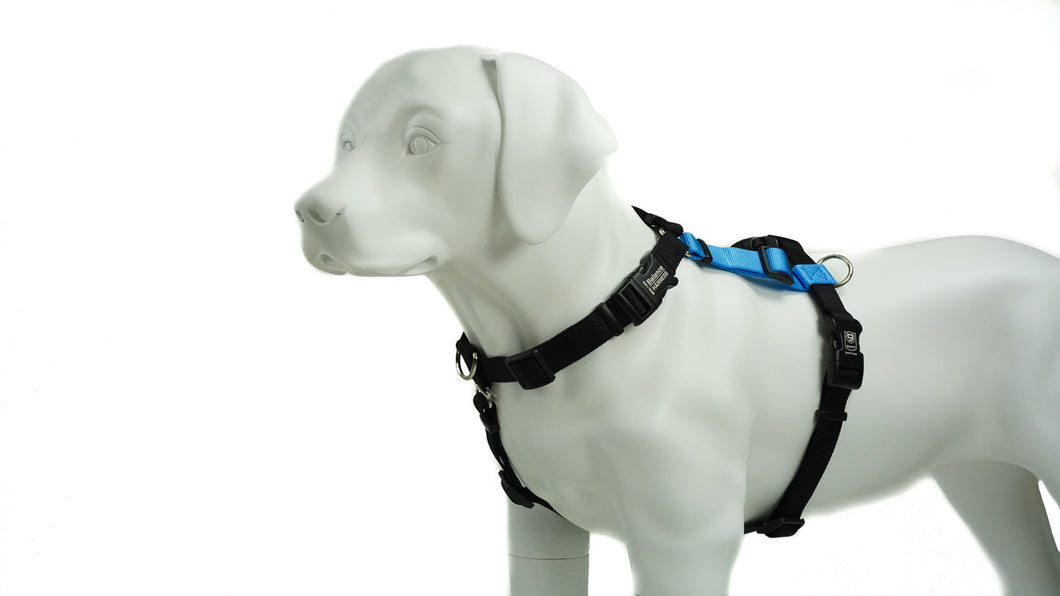 BLUE9 BALANCE HARNESS BUCKLE NECK SKY BLUE XSMALL