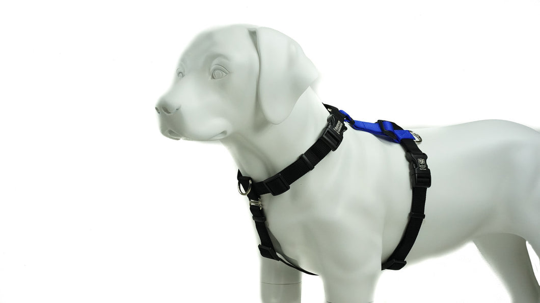 BLUE9 BALANCE HARNESS BUCKLE NECK BLUE SMALL